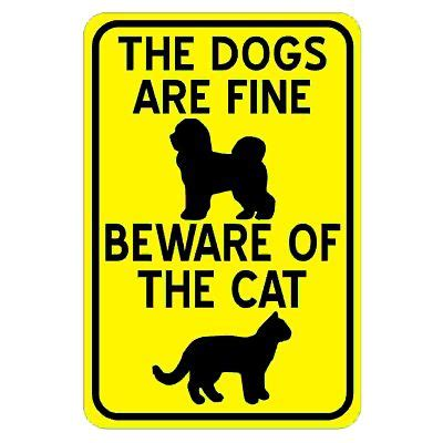 What is the summary Beware of the Dog Short Story?